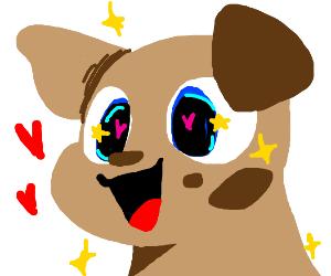 Sparkly eyed dog loves you
