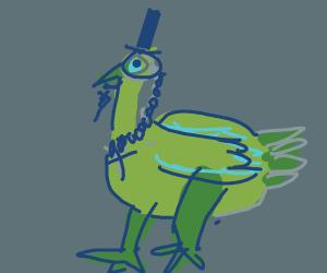 Proper Peacock Gentleman