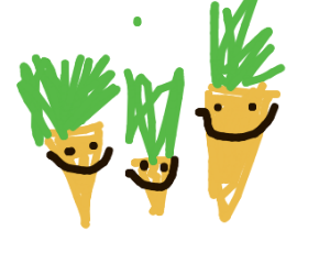 Carrot family living happily