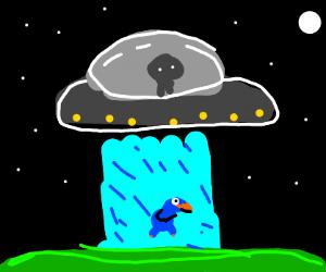UFO abducting baby bird