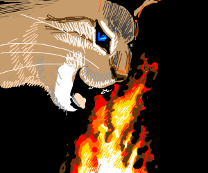 cat eating fire