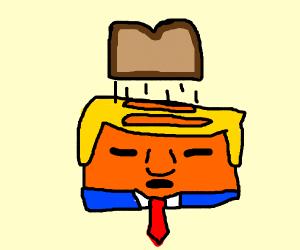 Donald trump toaster