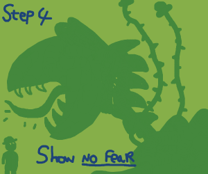 step 3: let your dino plant grow