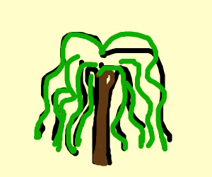 will, jaden, willow