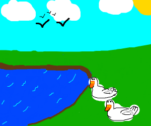 Two ducks having a sit