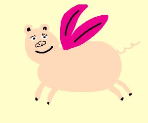 Pig fairy gains conciousness
