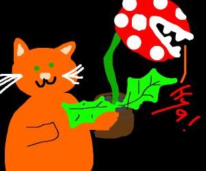 Cat holding pirhana plant (make noise)