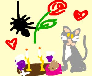 Spider Cat Romance