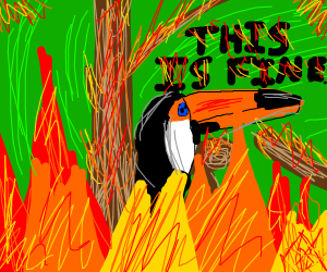 Toucan is sad cus his tree is on fire