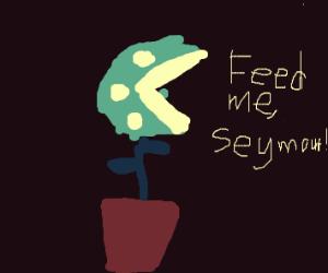 teal piranha plant w/ text: Feed me, Seymour!