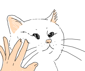 hands squishing cat face