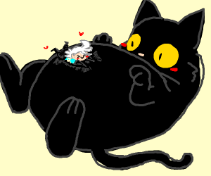Man rubs the belly of a giant black cat