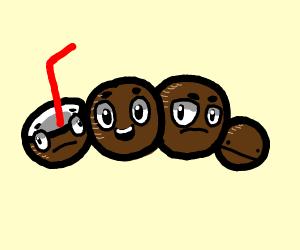 4 coconuts