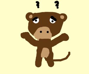 Perplexed Monkey