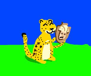 leopard wins trophy