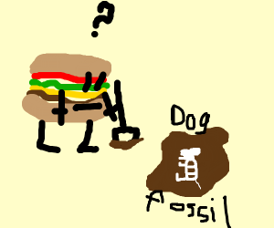 burger discover fossils of ancient dog