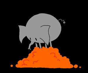 Elephant has stepped on many oranges
