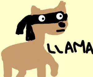 ninja llama