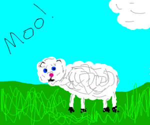 Sheep mooing