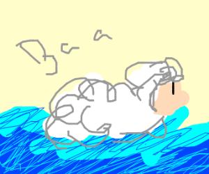 watersheep