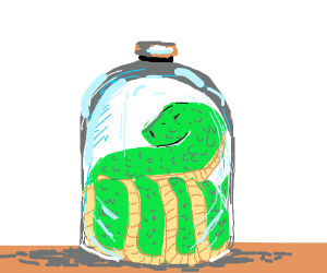 a snake in a glass bottle