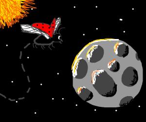 Ladybug flying through space