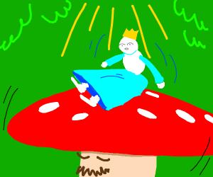 mushroom man carrying princess.