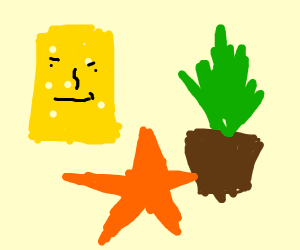 Smirking Cheese Next to plant with a starfish
