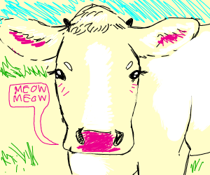 miau miau Im a cow