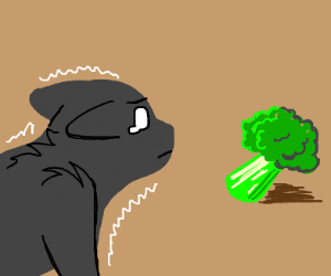 Cat is terrified of broccoli
