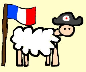 Historic Sheep