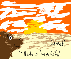 Camel in desert admiring sunset