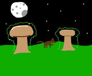 Dog surrounded by radioactive mushroom