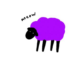 Purple Sheep saying meow