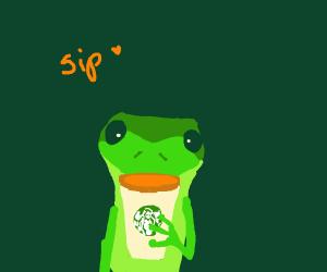 a frog drinking s starbucks