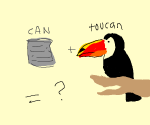 Can a Toocan Can if a toocan is a can?