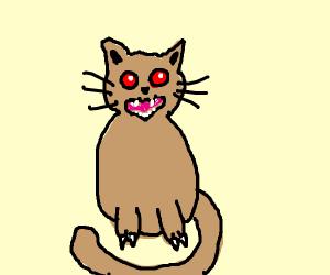 vicious kitty
