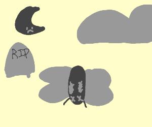 Moth died