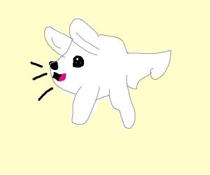 Floofy dog woofs at u