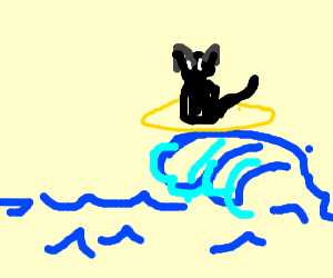 Cat riding a wave
