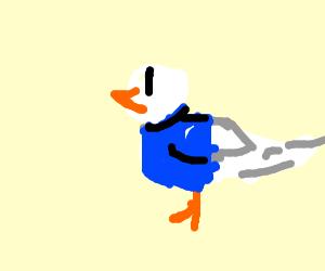 Dove wearing a T-Shirt