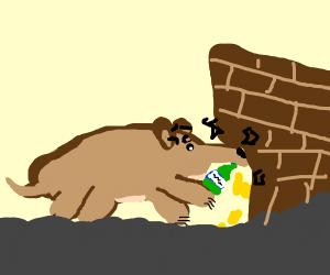 crash bandicoot drinking