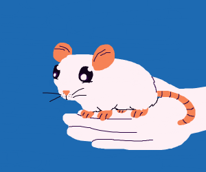 Someone holding a cute mouse
