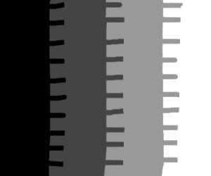Black to white gradient