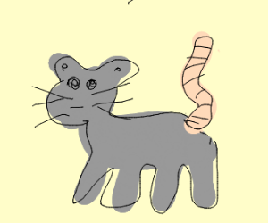 cat with mouse tail