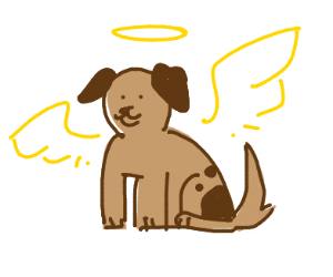 Puppy with angel wings