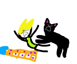 Black cat pulls human on sled