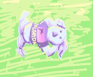Koala in Florida tourist shirt lies on grass