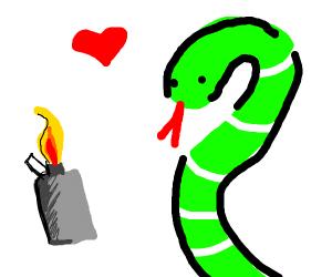 Snake marries a lighter