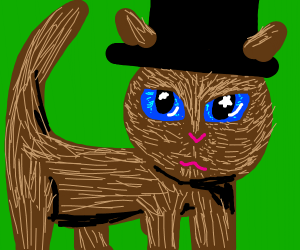 Cat in a top hat has beautiful eyes